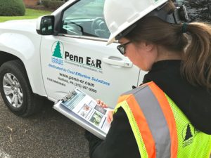 Penn E&R Obtains State-Issued Spotted Lanternfly Permitting